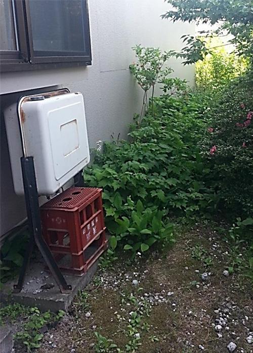 garden_003_img_001